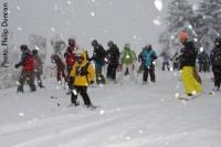 snowshoe-opener